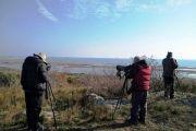 Μεσοχειμωνιάτικες καταμετρήσεις στο Εθνικό Πάρκο Ανατολικής Μακεδονίας-Θράκης